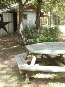 Amenities - Picnic area