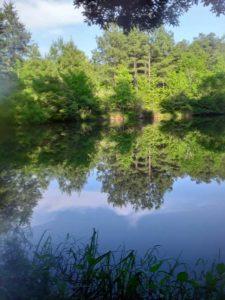 Lake1